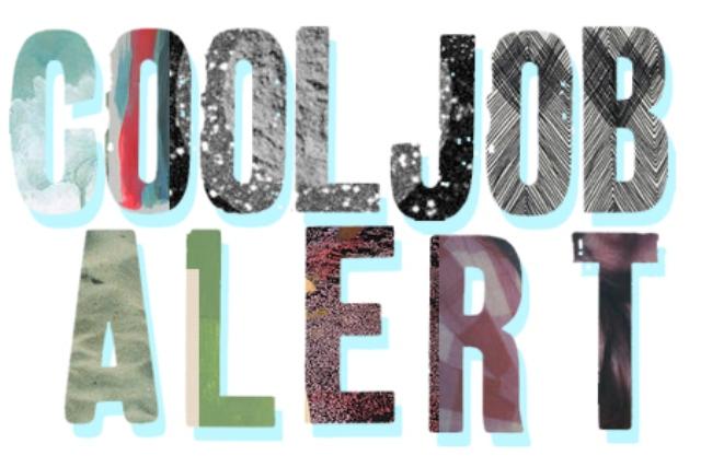 cool job alert