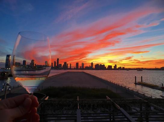 City Vineyard at Pier 26 (3)